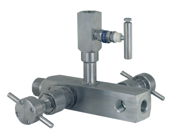 Series H70DB Primary Root Valves